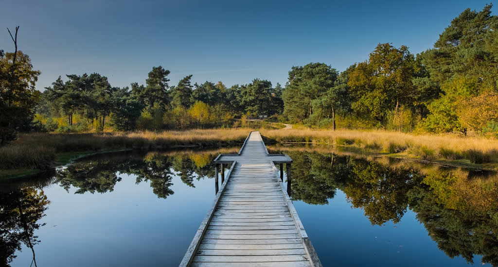 Nationaal Park De Maasduinen, The Netherlands | Your Dutch Guide