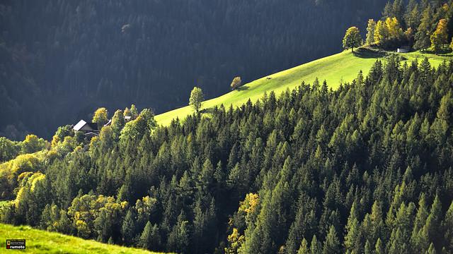 Alpine Landscape Styria Austria (c) 2019 Берни Эггерян :: rumoto images 2157 2