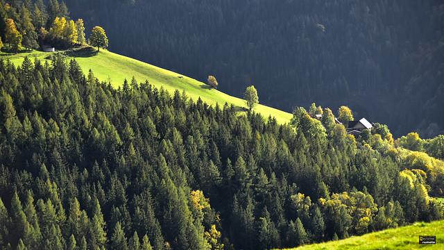 Alpine Landscape Styria Austria (c) 2019 Берни Эггерян :: rumoto images 2157 1