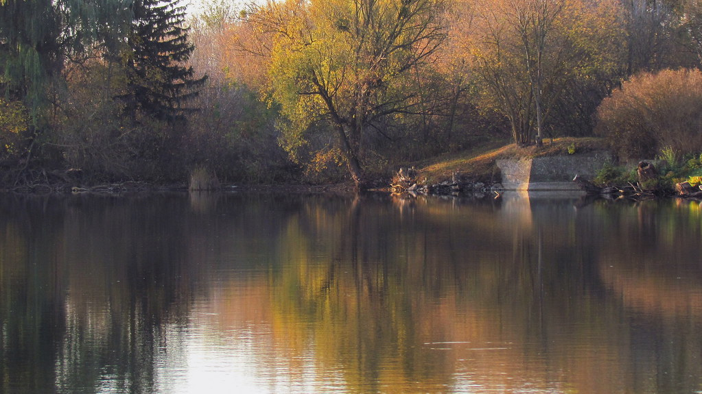 Autumn morning at the pond.