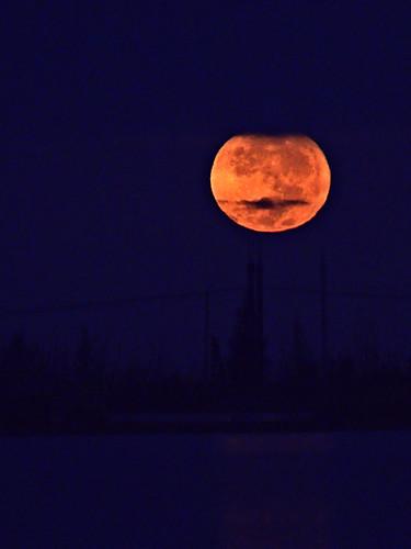 Pumpkin Moon setting 20191013