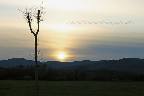 Nature : Sunset at la base nature, Fréjus