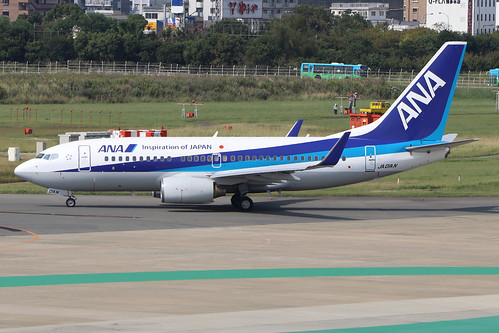 JA01AN  -  Boeing 737-781 (WL)  -  All Nippon Airways  -  FUK/RJFF 7/10/19 | by Martin Stovey