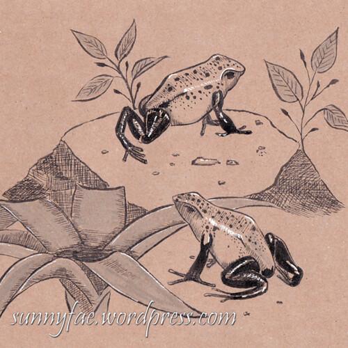 8 Blue poisin dart frogs