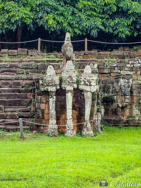 180727-145 Elephant Terrace (2018 Trip)