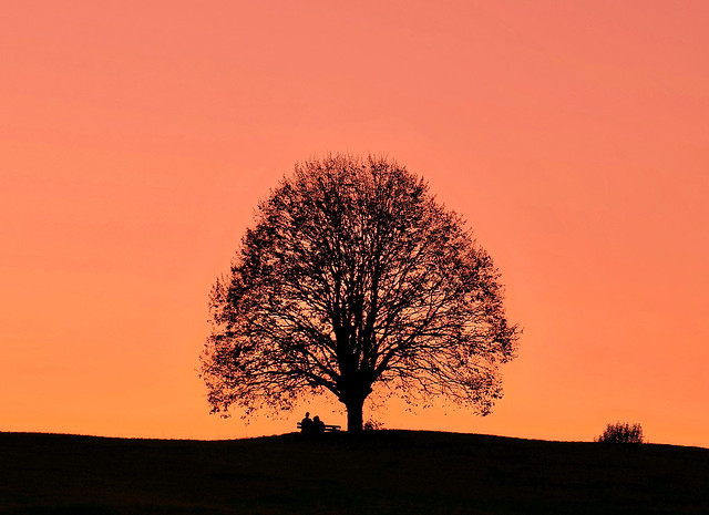 s'Sonnenuntergangsbankerl