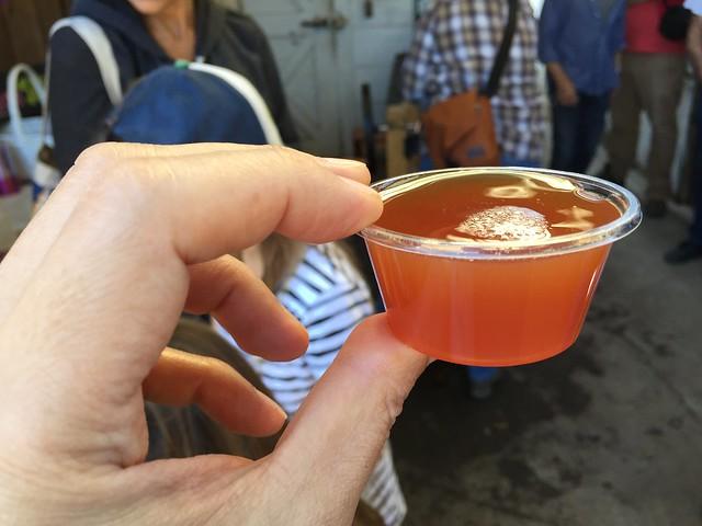 Fresh apple cider sample