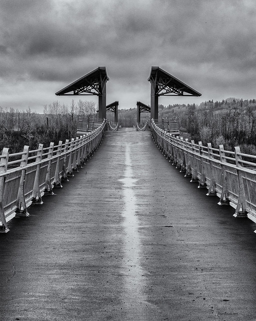 Terwilliger Foot Bridge