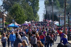 Rue St. Francois during Florissant Fall Festival