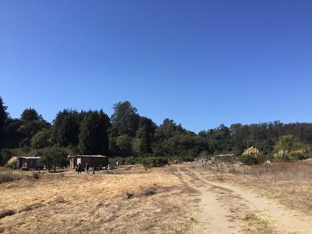 Sol Seeker Farm