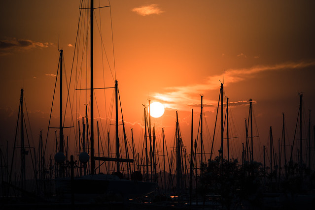sunset through the masts