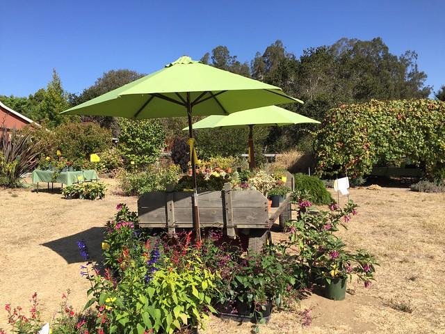 Terra Sole Nursery