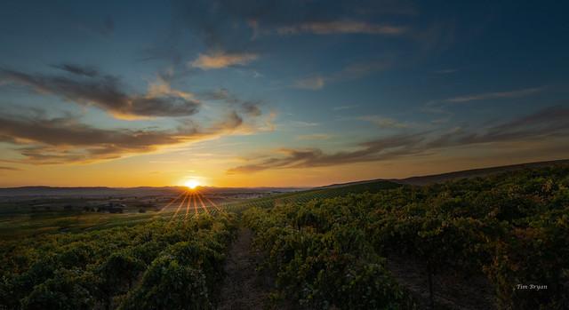 Last Sunset Before Harvest
