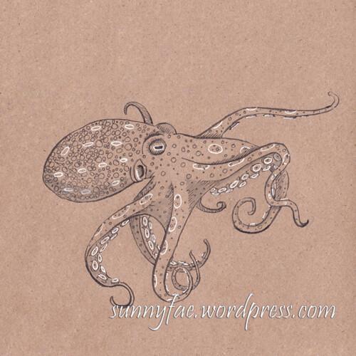 7 Octopus