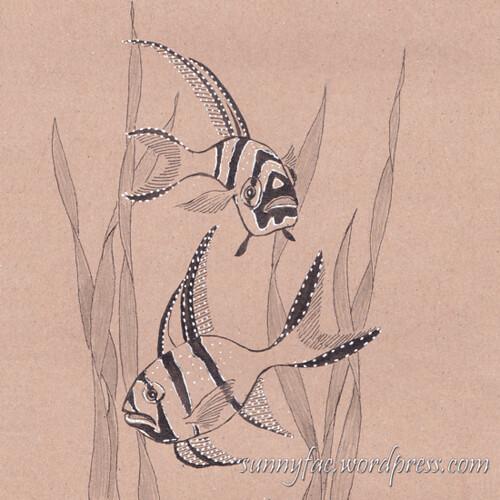 9 Highfin cardinal fish