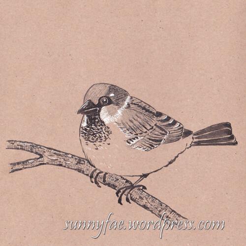 13 Sparrow