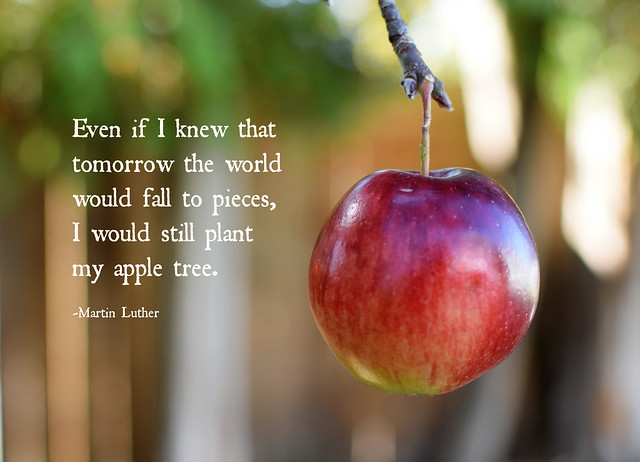 Philosophical Apple