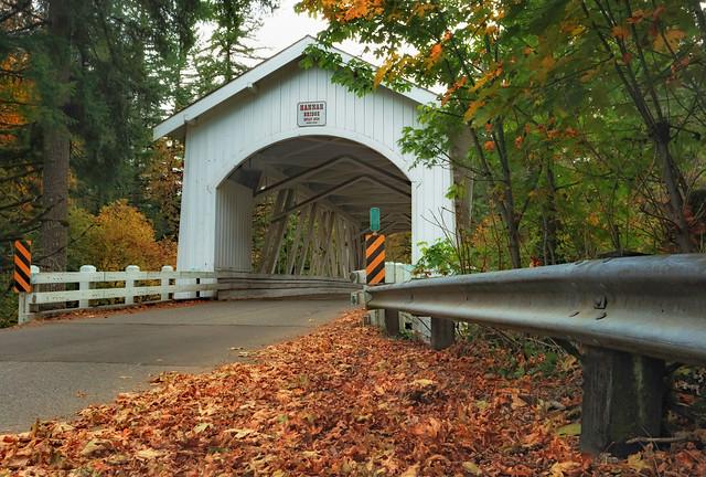 One Autumn Day In Scio, Oregon