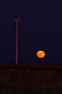 Hunter Moon Rising