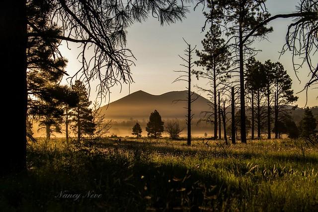 Sunset crater-Northern Arizona.  Morning light