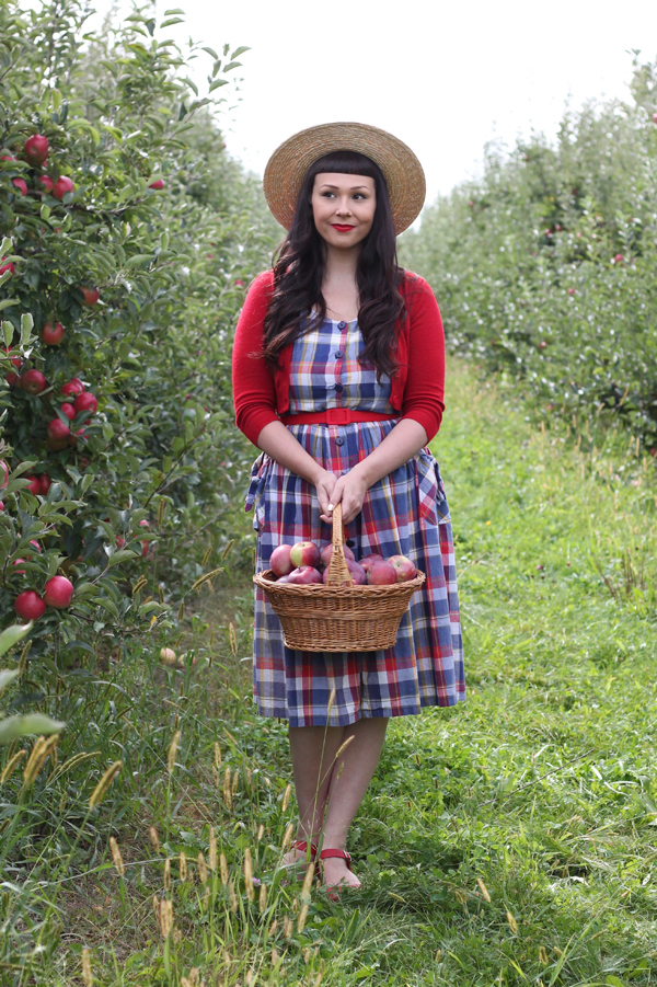 apple picking western ny