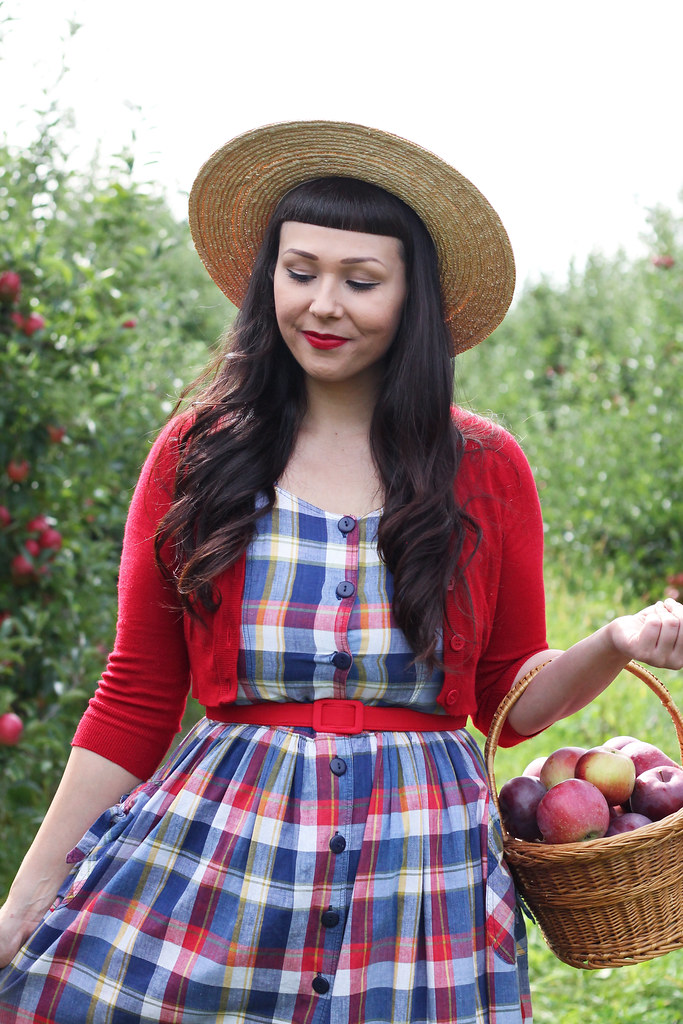 u pick apples rochester ny