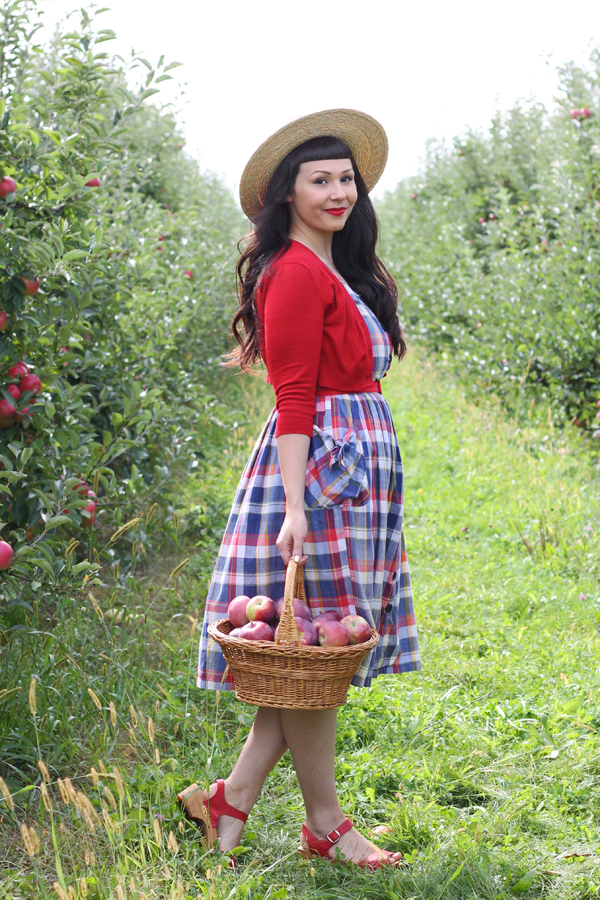 u pick apple orchard rochester ny