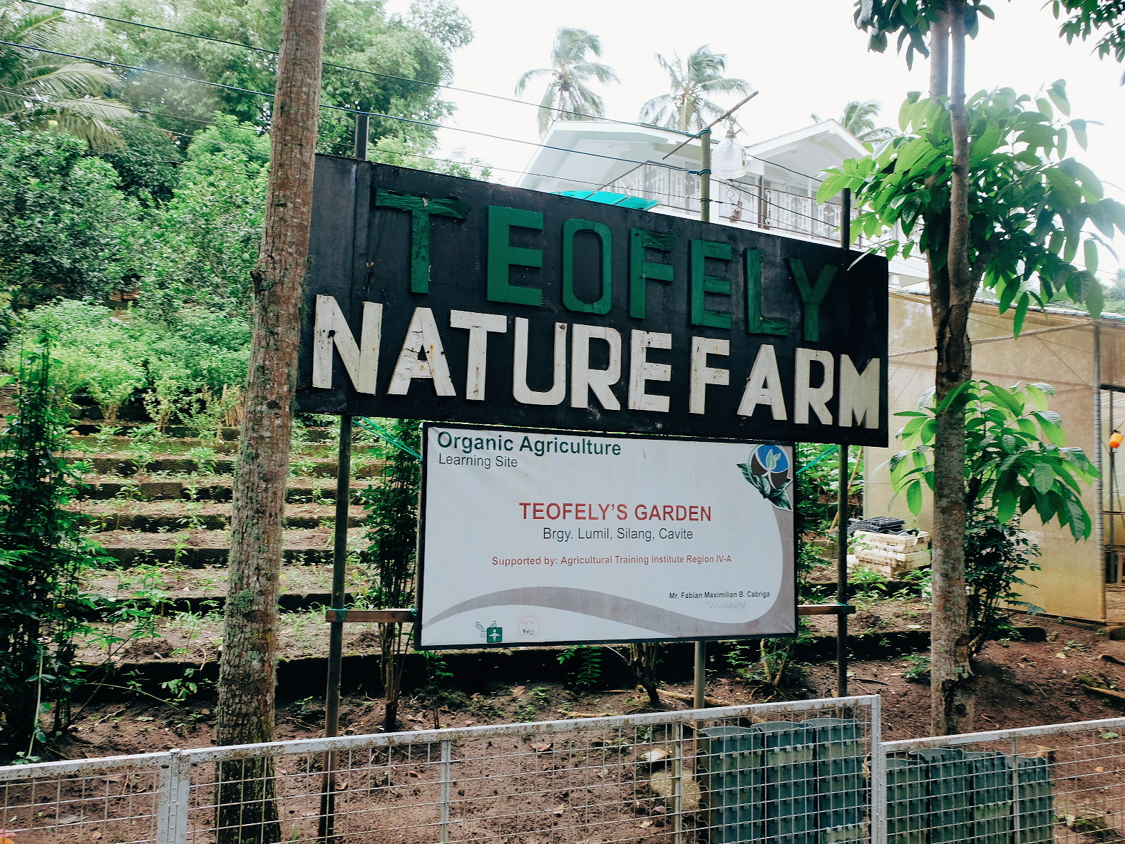 Teofely's Nature Farms