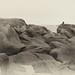 contemplation depuis le chaos rocheux