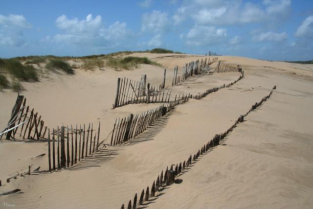 Les sables (é)mouvants