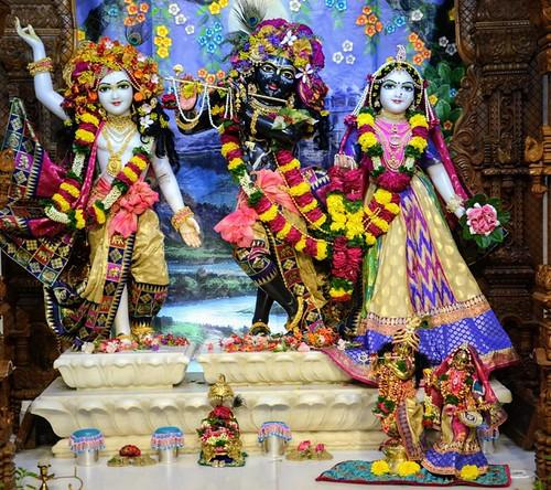 ISKCON GEV Wada Deity Darshan 14 Oct 2019