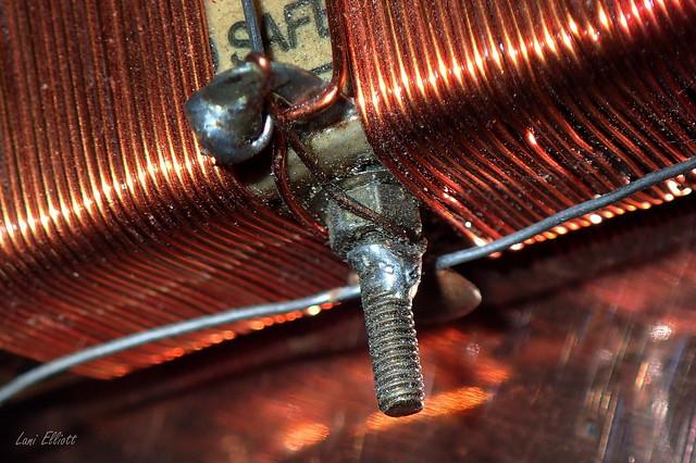 Copper WIRE coils.....Macro Mondays !