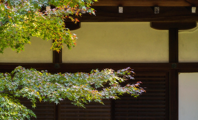Leafy Shoren-in
