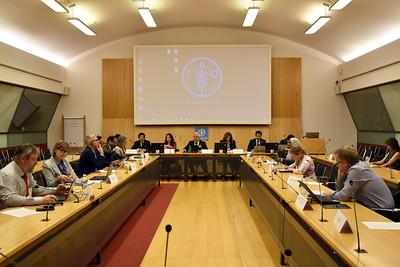 IYPH International Steering Committee 3rd meeting - October 2019