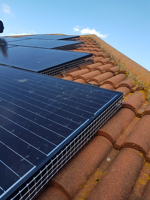 Solar panel proofing and pigeon removal by EPB Pest Control in Essex.