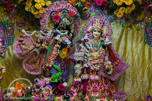 ISKCON Vrindavan Deity Darshan 14 Oct 2019