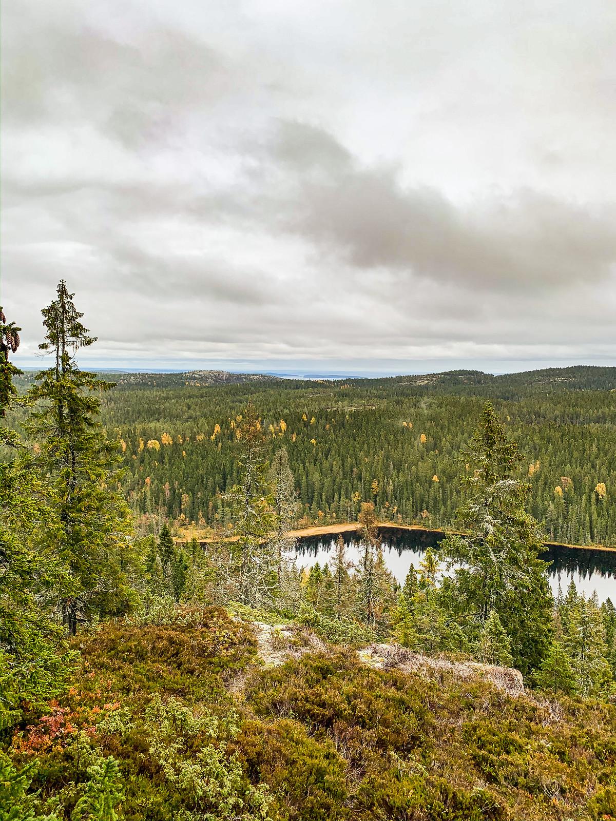 191012 - Skuleskogen