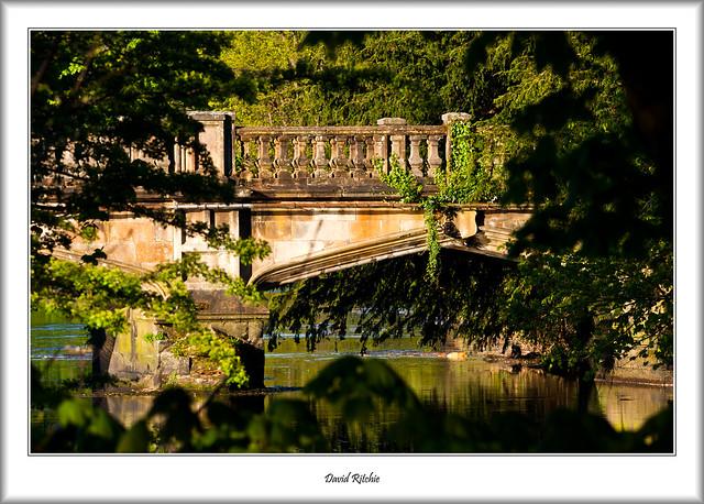 The Bridge In The Trees