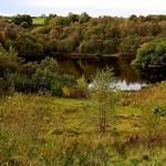 Jackhouse Nature Reserve