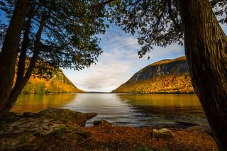 Peak foliage in New England