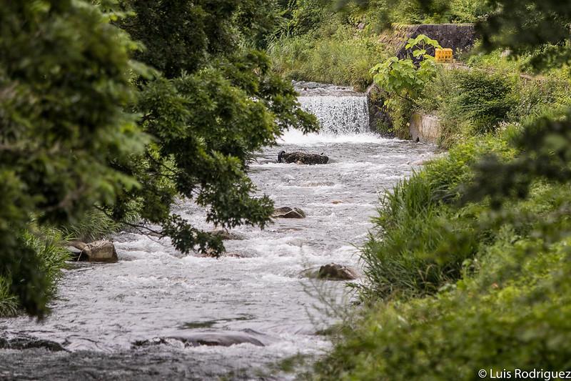 Ríos y riachuelos en Ohara