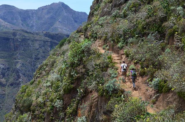 Track in Anaga, Tenerife