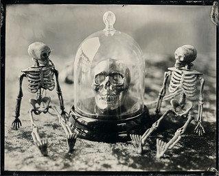 Under Glass | by Silver and Iron Tintype