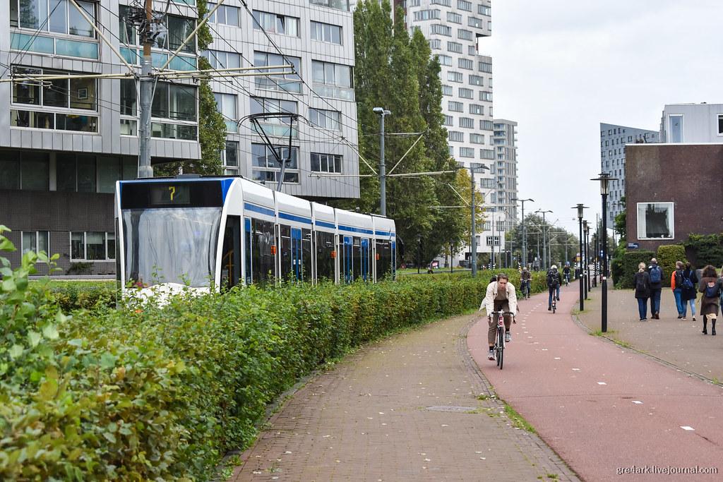 Кусты вместо забора в Амстердаме