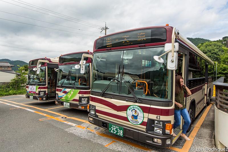 Autobuses a Ohara