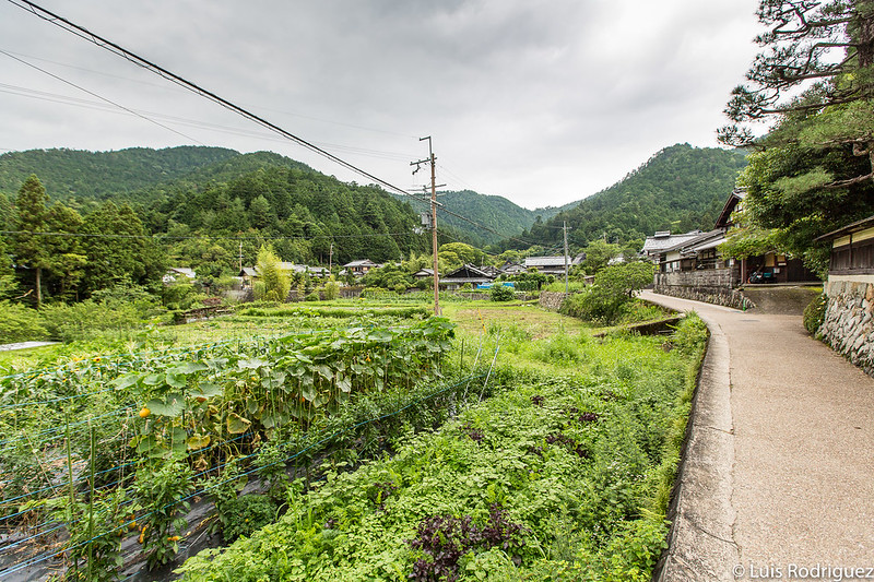 Paisajes rurales en todas las rutas (éste, cerca de Ohara)