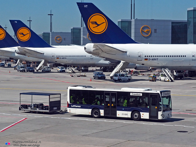 Mercedes Citaro C2 K - Lufthansa 23 688