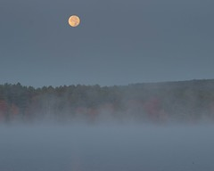 Hunters Moon Over Lake Potanipo