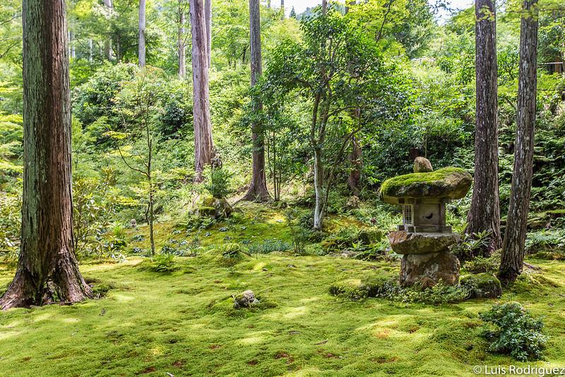 Jardines del templo Sanzen-in