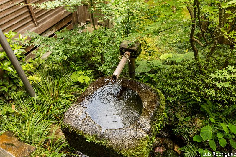 Pileta de agua en los jardines del templo Sanzen-in de Ohara